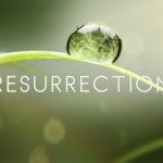 Resurrection Season 2 Officially Announced