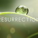 Resurrection Season 2 Officially Announced